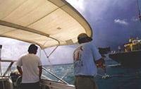 work_boat-200